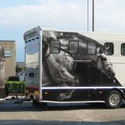 12_BANCA IFIS_Van trasporto cavalli
